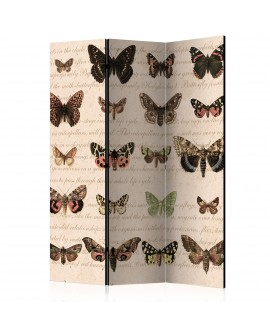 Paravent 3 volets - Retro Style: Butterflies [Room Dividers] 135x172