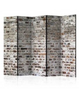 Paravent 5 volets - Old Walls II [Room Dividers] 225x172