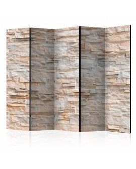 Paravent 5 volets - Stony Gracefulness II [Room Dividers] 225x172