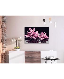Tableau à peindre par soi-même - Orchidée rose (fond noir) 60x40