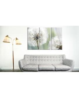 Tableau sur verre acrylique - Fluffy Dandelions [Glass] 120x80