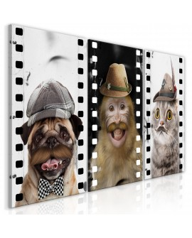 Tableau - Funny Pets (Collection)