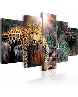 Tableau - Leopard Relaxation